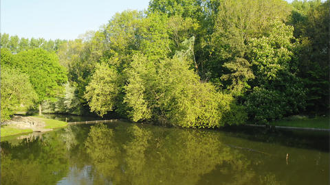 Lake in a forest (Fort-Louis, France) ビデオ