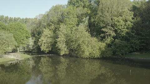 Lake in a forest (Fort-Louis, France) d-log Live Action