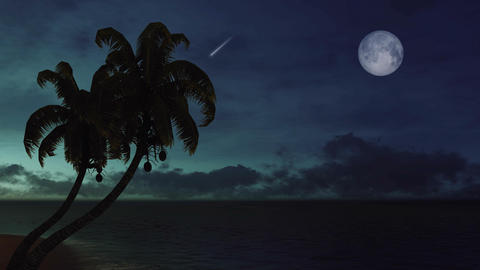 Palm tree silhouettes against night sky with falling… Stock Video Footage