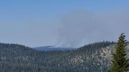 Wild fire near Mammoth Lake Footage