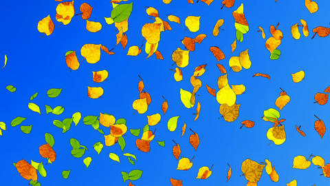 Fall leaves slow-mo cartoon animation Animation