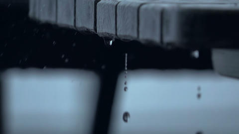 Raindrops Сloseup. Slow Motion. Seamless Loop Footage