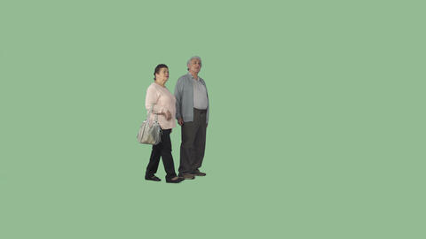Elderly couple is walking, examining attractions. Casual clothing. Alpha channel Live Action