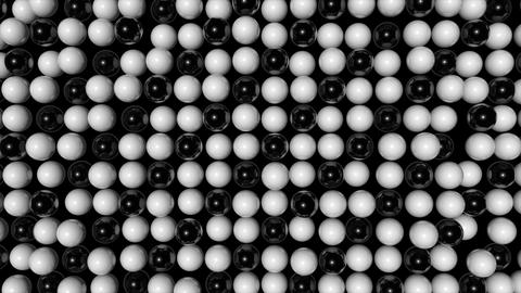 Abstract random animated background with black and white spheres Animation
