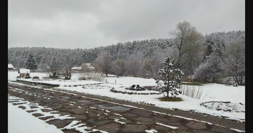 First Snow Archivo