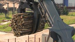 Wood Processing. Lumber. 0