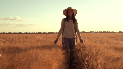 adult brunette wearing straw hat walks wheat field Footage