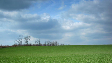 time lapse green field and moving clouds Stock Video Footage