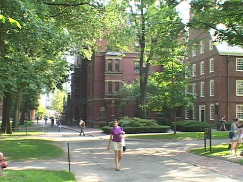 Students walk in front of a Harvard classroom building Footage