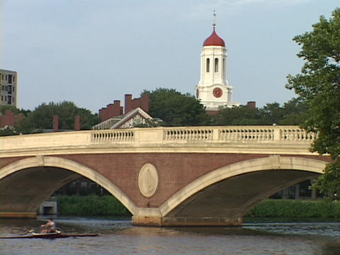 A sculler rows a skiff under a bridge on the Charles River Stock Video Footage