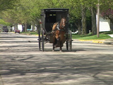 An Amish horse cart passes on a quiet street Footage