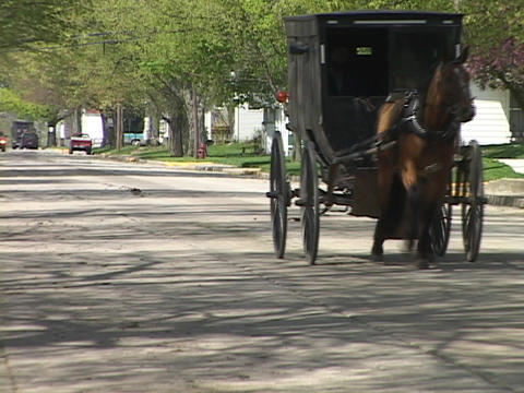 An Amish horse cart passes on a quiet street Stock Video Footage