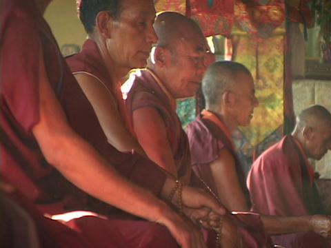 Buddhist monks pray together Stock Video Footage
