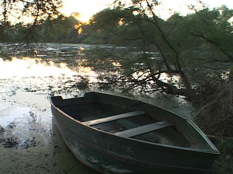 A row boat sits on the shore of a swamp Stock Video Footage