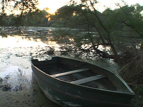 A row boat sits on the shore of a swamp Live Action