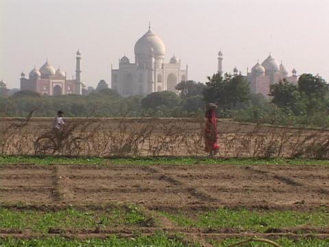The Taj Mahal rises behind farms Stock Video Footage