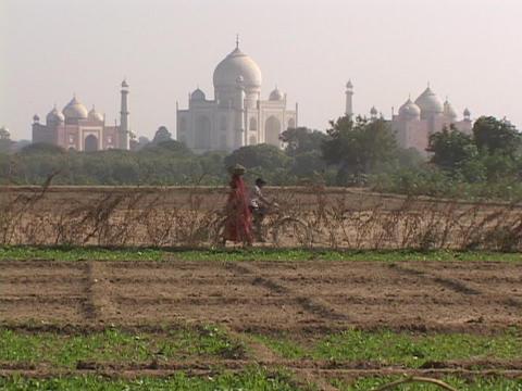 The Taj Mahal rises behind farms Footage