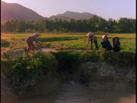 women use a rope and pail system to bail water into a field Footage