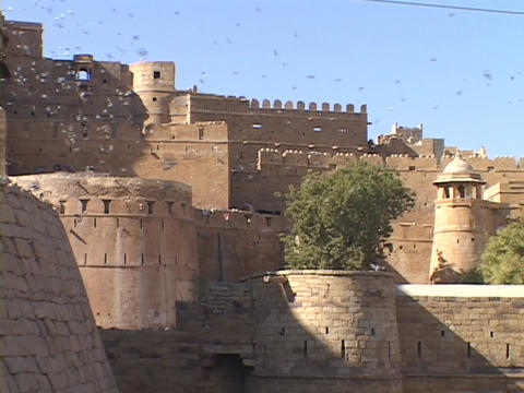 Flocks of birds swarm around Jaisalmer Stock Video Footage