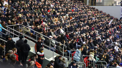 Stadium Crowd 2