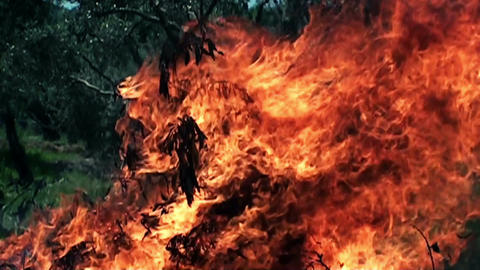 Fire in slow motion Footage