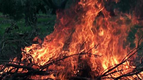 Fire in slow motion 3 Footage