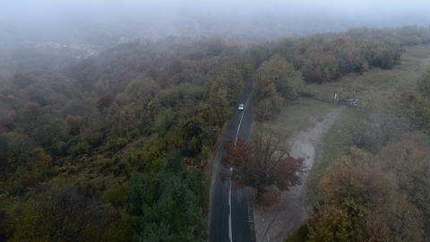 Silver car driving trough misty spooky forest, aerial drone view Archivo