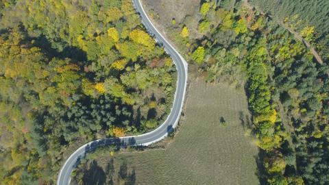 Top view of scenic mountain road going trough golden forest in the mountains Live Action
