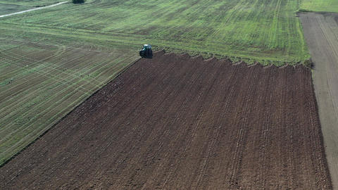 Tractor on agriculture plowed fields and flock of birds,aerial view Live Action