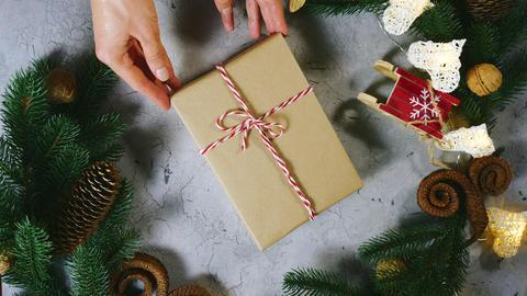 Christmas decorations, festive decor, pine branch, pine cone, berries. Female Live Action