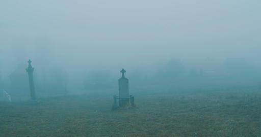Misty Cemetery Day ビデオ