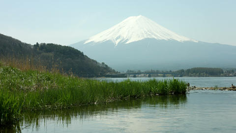 Fuji mountain with grass Footage