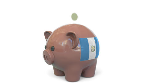 Putting money into piggy bank with flag of Guatemala. Tax system system or Live Action