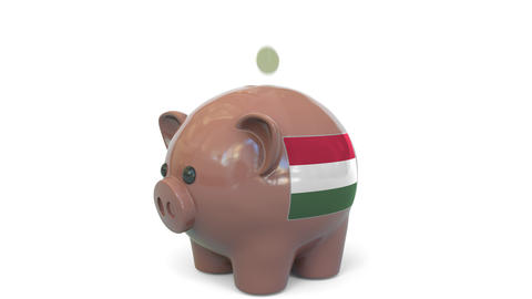 Putting money into piggy bank with flag of Hungary. Tax system system or savings Live Action