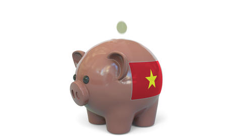 Putting money into piggy bank with flag of Vietnam. Tax system system or savings Live Action