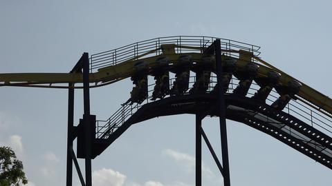 Amusement Park Roller Coaster Live Action