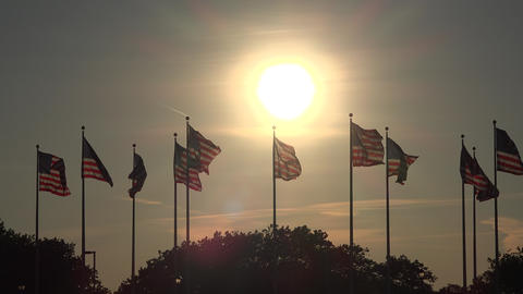 American Flags at Dusk or Dawn Footage