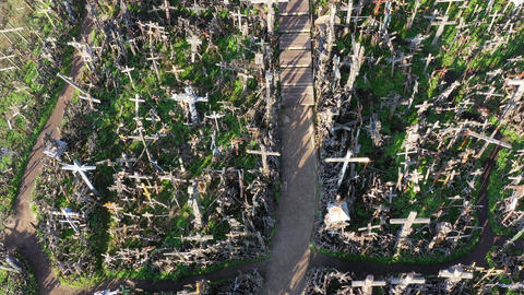 Lithuanian pilgrimage site iconic hill of crosses near Siauliai, aerial Live Action