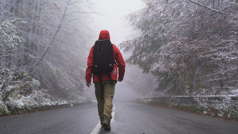 Lonely man confidently walking on frozen asphalt road trough frozen forest Live Action