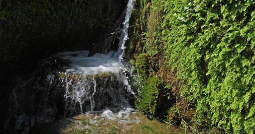 Rog Waterfall, Roski Slap, Krka Natural Park, Near Sibenik in Damaltia, Croatia, Real Time 4K Footage