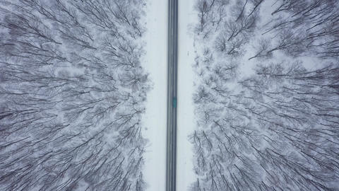 Top view of traffic on a road surrounded by winter forest Archivo