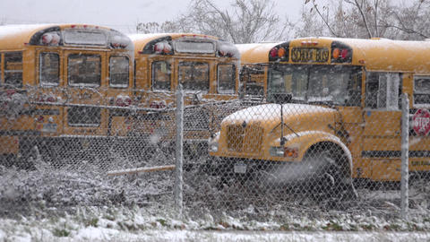 School Buses During Snow Storm Live Action