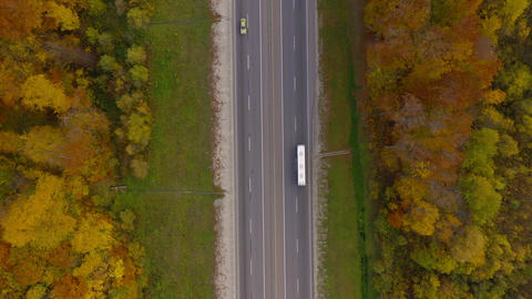 Top view on the traffic on the road surrounded by autumn forest Archivo