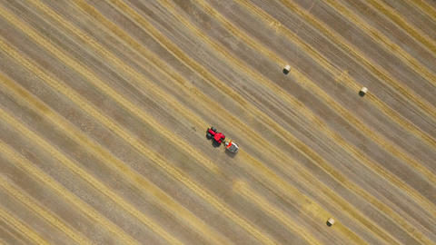 Aerial view of haymaking processed into round bales. Red tractor works in the Footage