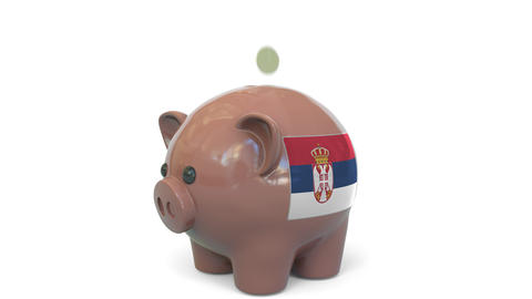 Putting money into piggy bank with flag of Serbia. Tax system system or savings Live Action