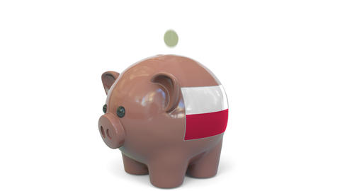 Putting money into piggy bank with flag of Poland. Tax system system or savings Live Action