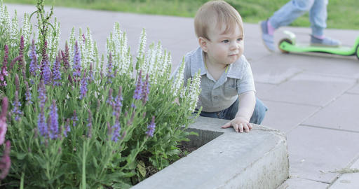 A child near a flower bed Live Action