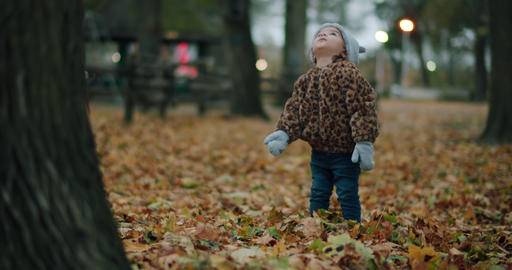 Toddler girl exploring a park on a cold fall day at dusk Live Action