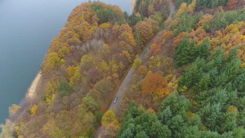 Drone following car driving slowly on forest road with beautiful autumn forest Live Action