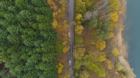 Cars driving at peaceful asphalt road in golden autumn forest, top view Live Action